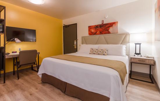 Kawada Hotel: King Room